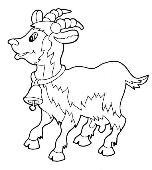 Картинки козы раскраски